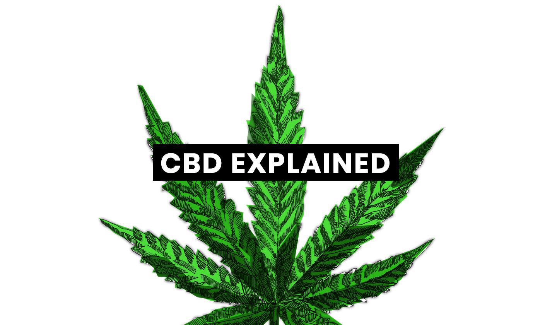 CBD Explained